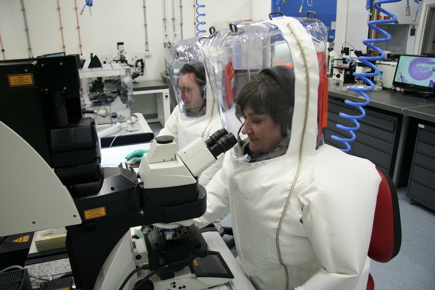 Two CSIRO scientists in full protective gear - one using a computer, the other a microscope - at the Animal Health Laboratory.