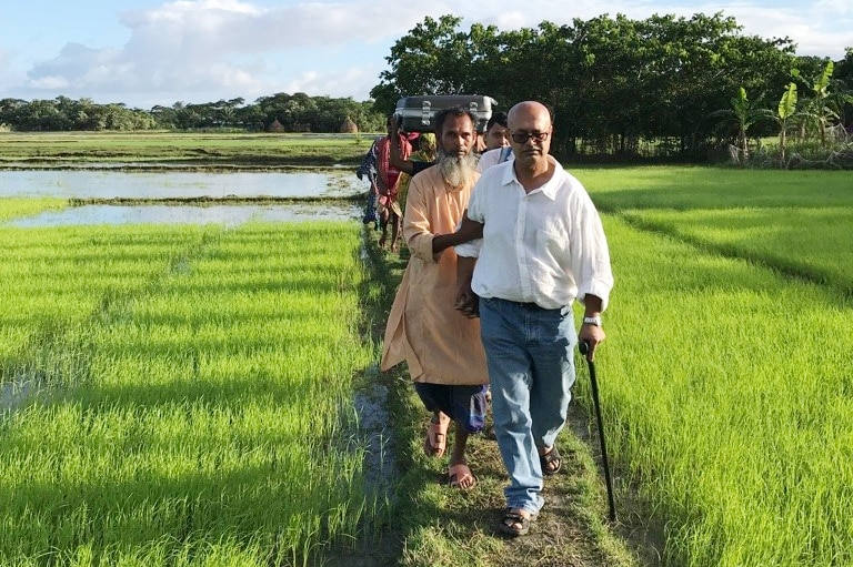 Queue of people walking in a queue through a rice paddy, their shadows falling on the rice