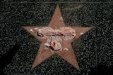 Trump star on Hollywood Walk of Fame