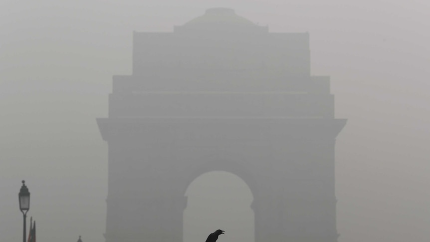 The silhouette of New Dehli's India Gate is obscured by smog as a crow sits on a barricade in the foreground.