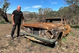 A man standing next to a burnt-out old car among scrubby trees