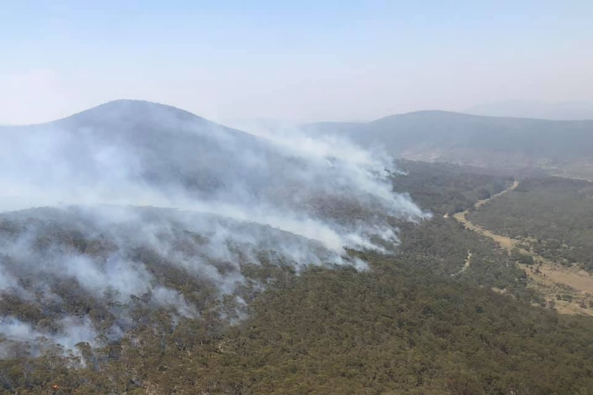 Smoke billows in a line out of a forest, as seen from an aerial view.