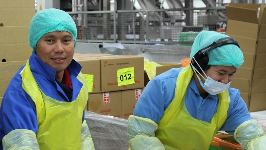 Two workers at a chicken factory. They are wearing aprons, gloves and hair nets.