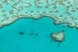 Heart reef - only 17 metres in diameter - seen from the air in a scenic flight.