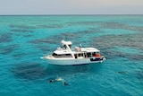 Snorkellers swim around a tour boat on the Great Barrier Reef off Townsville.