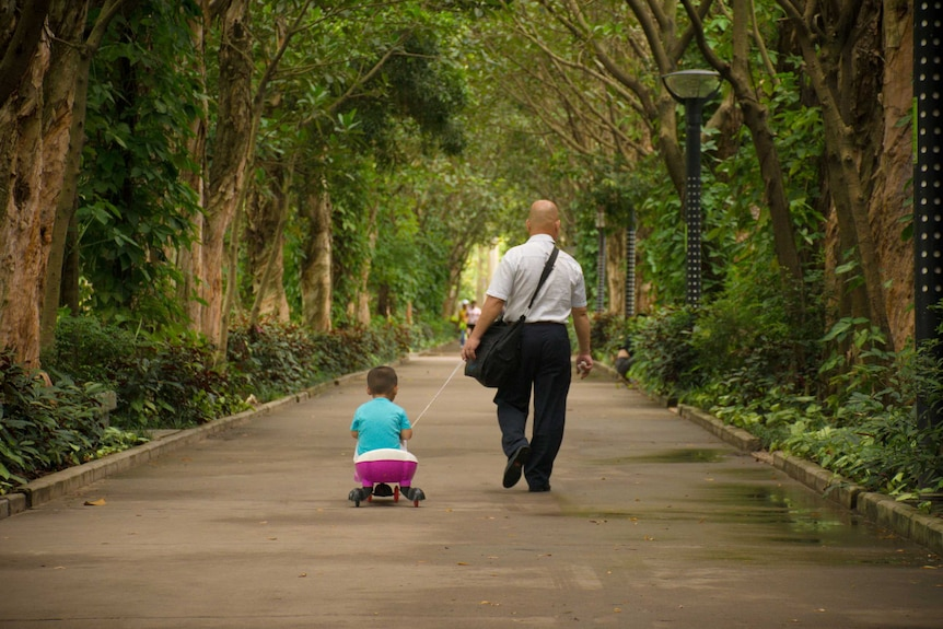 A man walks down a path in a city garden, pulling a toddler on a wheeled toy behind him.