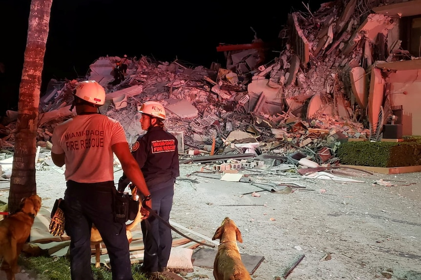 Rescue officers with dogs and rubble in the background.