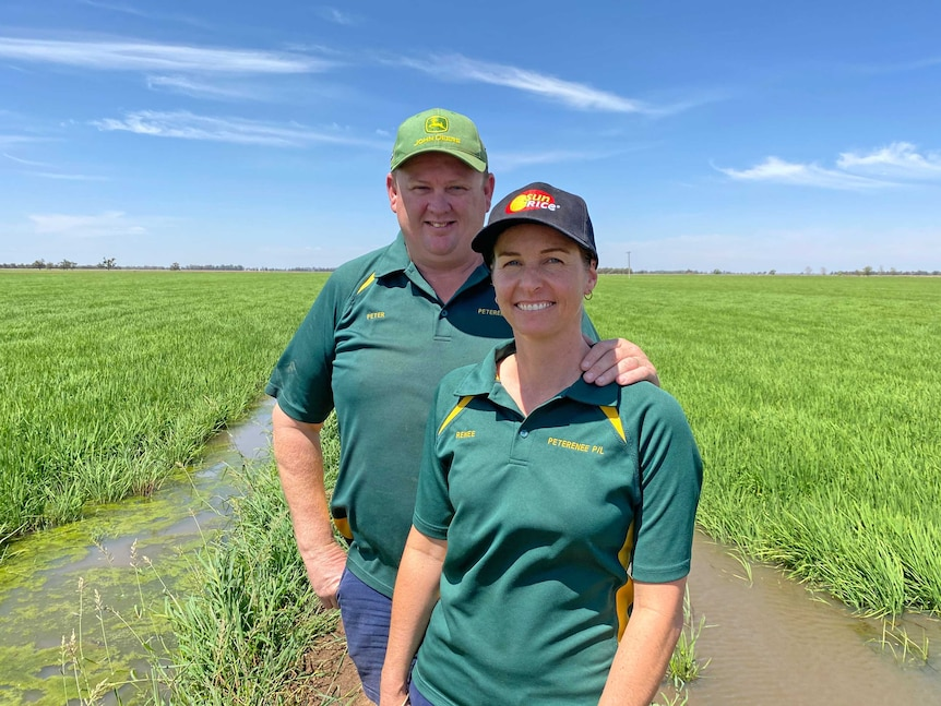 A man and a woman standing on a dirt bank in paddock of green rice, they are smiling.