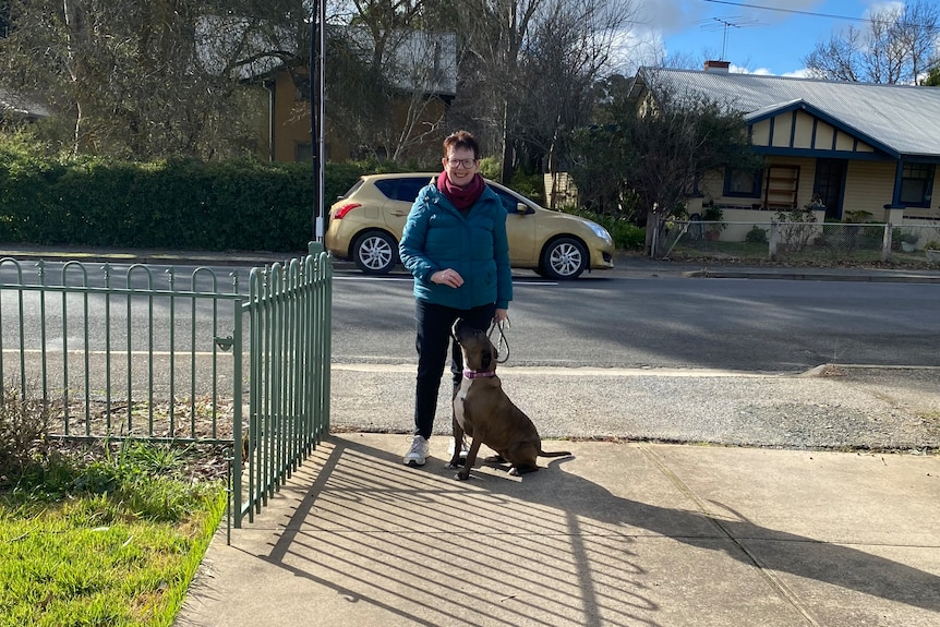 Ron's friend Dorothy takes his three-year-old staffy for a walk. She's standing at the gate with the dog.