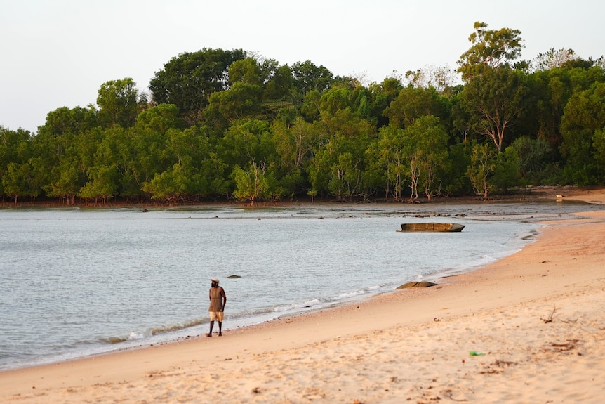 A man walks on a sandy beach with trees in the background