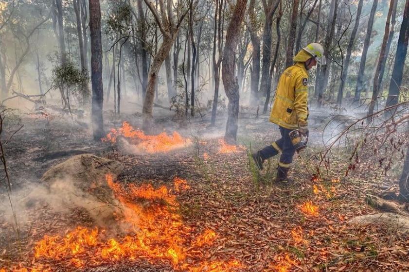 rfs controlled burns