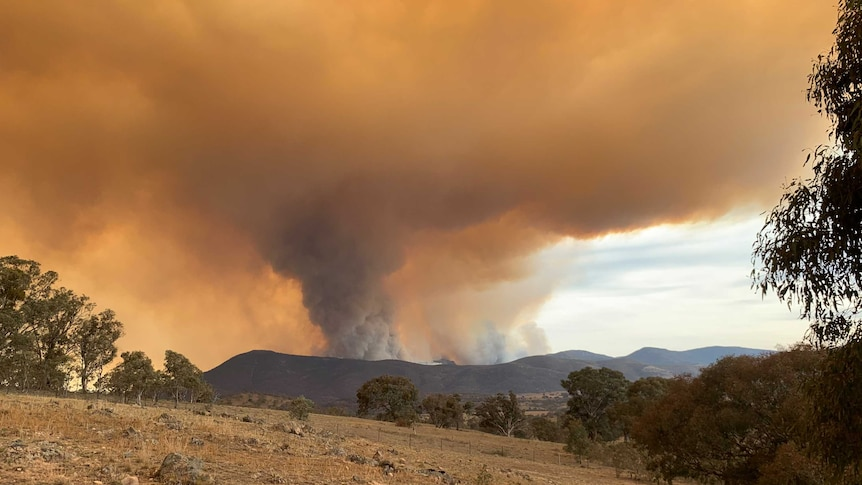 View of the smoke from the Orraral Valley fire.