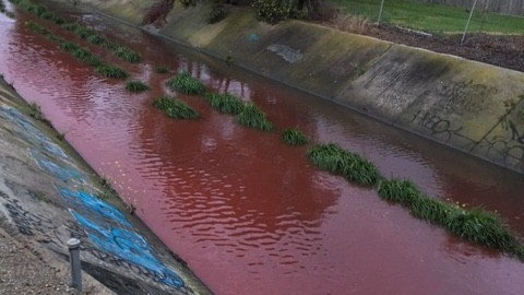 The Stony Creek is reddish-brown in colour as it flows down a concrete water channel.