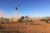 A helicopter and farmers on quad bikes muster cattle.