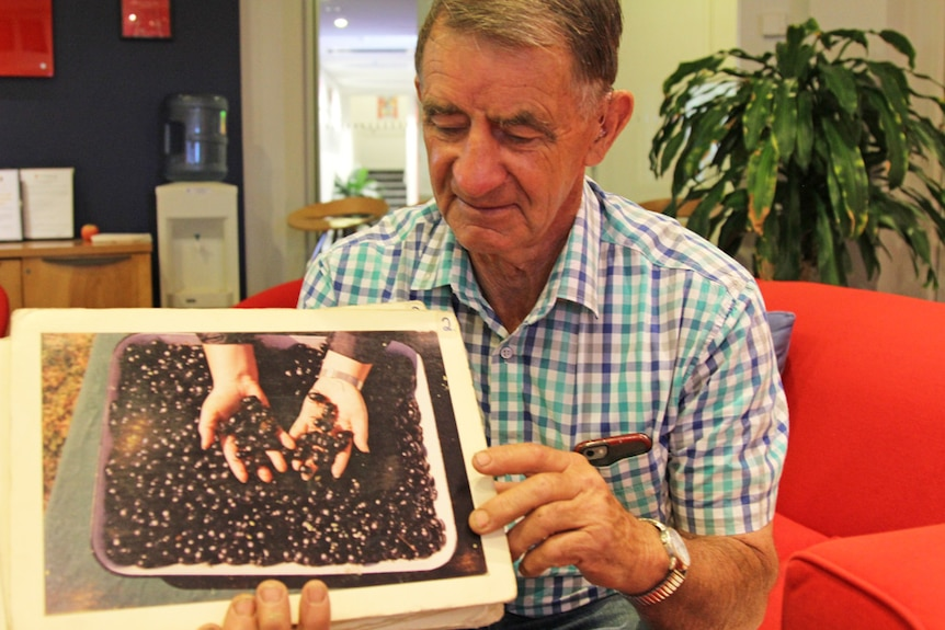 A man holding a picture of dung beetles.