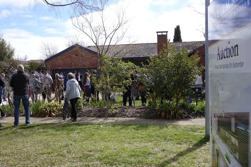 A Canberra house goes under the hammer.