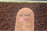 A picture of a potato with eyes and lips.