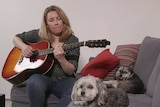 Musician Rebecca Brown plays guitar on the couch next to her two dogs.