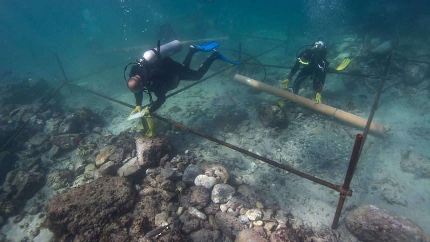 Archaeologists excavate the wreckage of the Esmeralda.