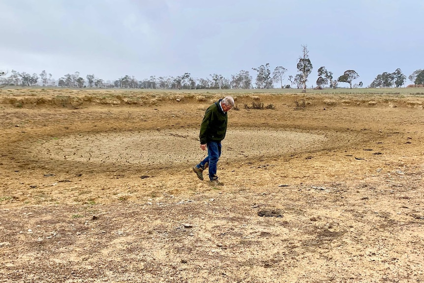 Dry dam in bare paddock, brown and dead vegetation. Farmer in middle of dam on cracked surface.