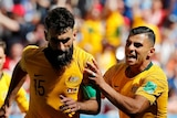 Mile Jedinak celebrates goal against France