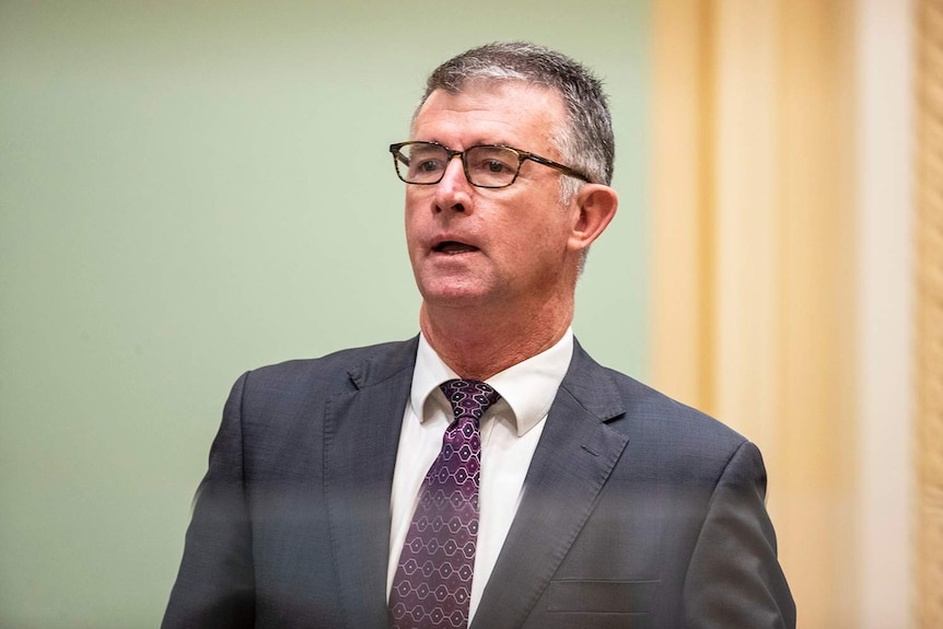 Tim Mander speaks during Question Time at Parliament House in Brisbane.