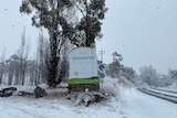 A Jindabyne town sign surrounded by snow as snow falls in the foreground.