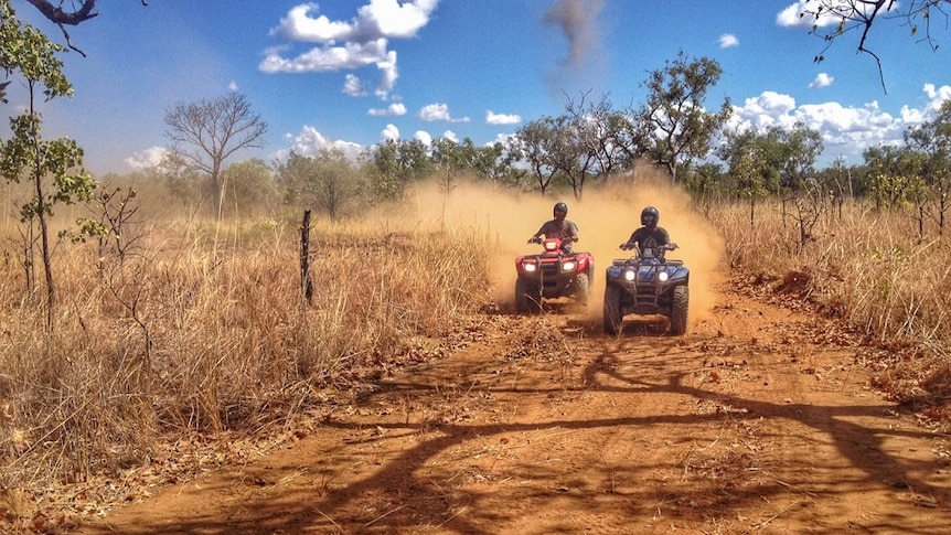 Two Indigenous cattlemen ride quad bikes during an assessment