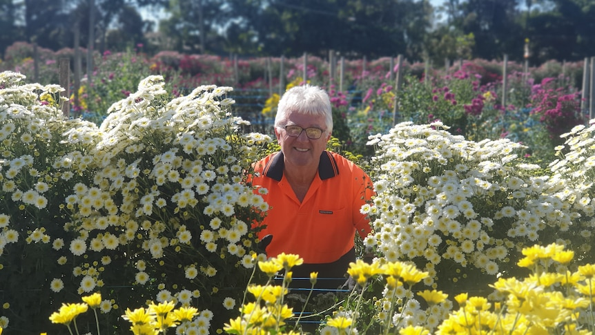 Man standing between bunches of flowers