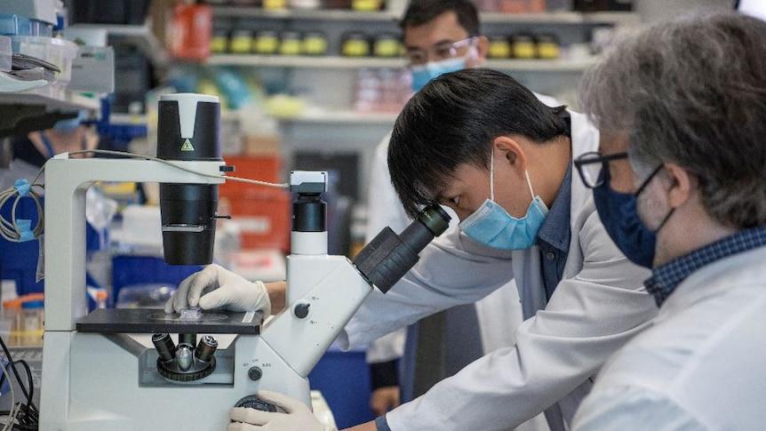 Researcher Xiaodong (Ethan) Lieu looking down a microscope