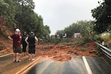 Mud and trees cover the road after a landslide