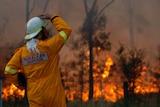 An RFS volunteer keeps a watch on bushfires
